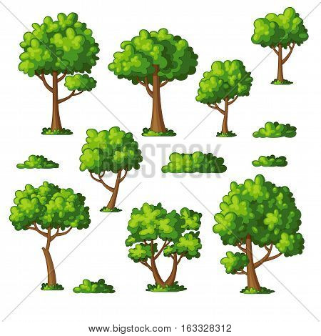 Illustration of some trees and bushes, vector