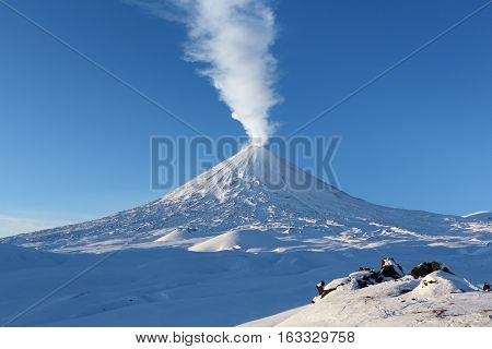 Winter volcanic landscape of Kamchatka Peninsula: view of eruption active Klyuchevskoy Volcano (Klyuchevskaya Sopka) - emission from crater of volcano plume of steam gas and ashes. Russian Far East.