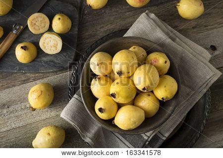 Raw Organic Yellow Guava Fruit