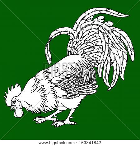 Calling rooster coloring on green background. Decorative chicken monochrome. Coloring page book. A symbol of the Chinese new year 2017 according to east calendar.