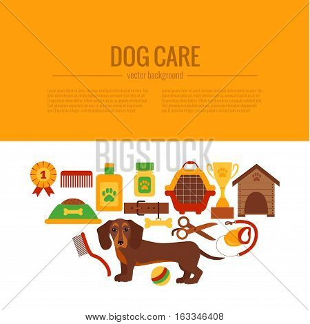 Dachshund care infographic concept with dog grooming isolated elements. Dachshund puppy training colorful cartoon poster vector illustration template for web sites, pet shops or dog care designs.