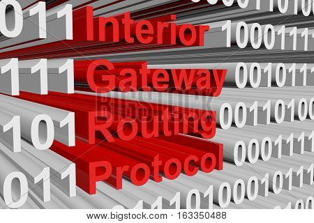 Interior Gateway Routing Protocol is presented in the form of binary code 3d illustration