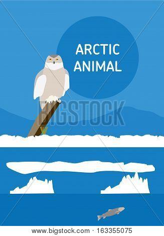 Polar owl sitting tree stump. Vector drawing of a series of Arctic animals. Flat style illustration