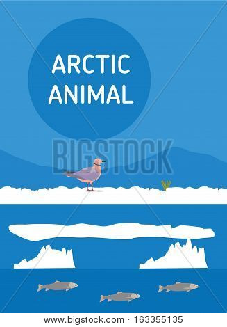 Pink Seagull sitting in the snow. Vector drawing of a series of Arctic animals. Flat style illustration