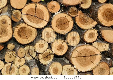 Stack of round firewood background texture pattern