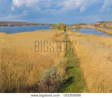 Autumnal landscape with path in rush field near Dnepr river at fall season Ukraine