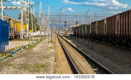 freight cars at the station on a summer day