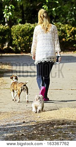 A young girl with cell phone walking her dogs back to the house.