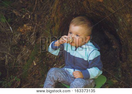 little boy sitting near a stump in a wood and smell mushroom
