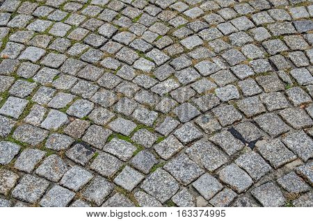 old grey cobbles after rain. close up