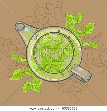 peppermint tea in glass teapot on brown background