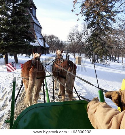 A winter sleigh ride being pulled by two mules though a city park.