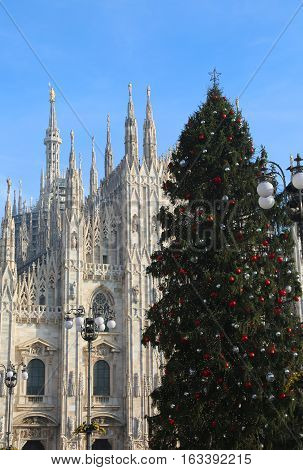 Big Christmas Tree In Front Of The Cathedral Of Milan In Italy
