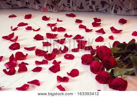 bouquet from red roses and his scattered petals on a bed with white sheet and two pillows