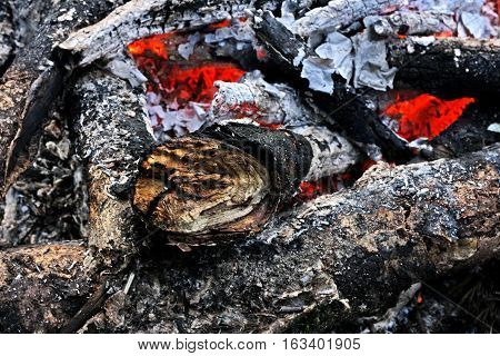 Fireplace. The remains of the fire: coals ashes embers twigs the charred sticks.