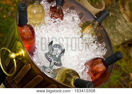 A bucket of wine bottles in ice