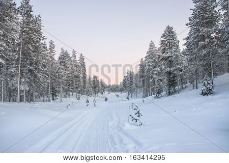 Walking in a snowy pathway on a freezinfg cold day in Lapland.