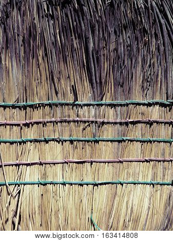 Detalle de escoba. Textura natura y patrón de ´líneasl
