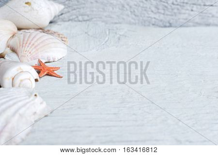 Sea shells and orange sea star over wooden background.