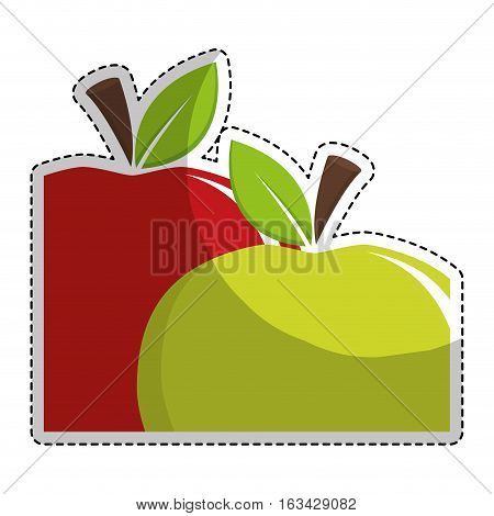 sticker of green apple and red apple fruit icon over white background. vector illustration