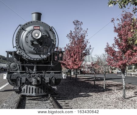 Front view of old locomotive engine with foliage