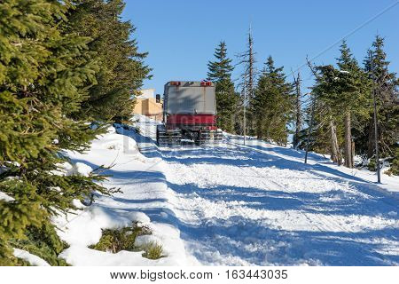 Large snowmobile in the winter forest on a sunny day