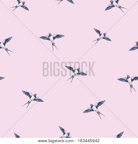 Beautiful swallow on a pink background. Watercolor illustration. Spring bird brings love. Handwork. Seamless pattern