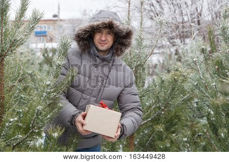 The Guy Among Fir-trees With A Gift