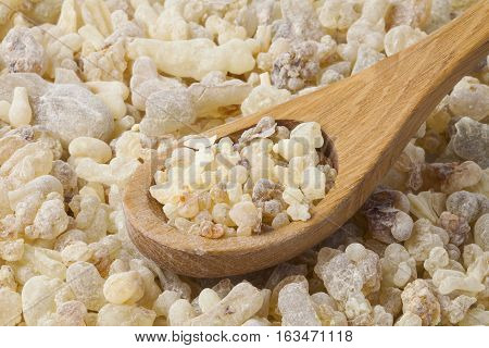 Frankincense is an aromatic resin, used for religious rites, incense and perfumes