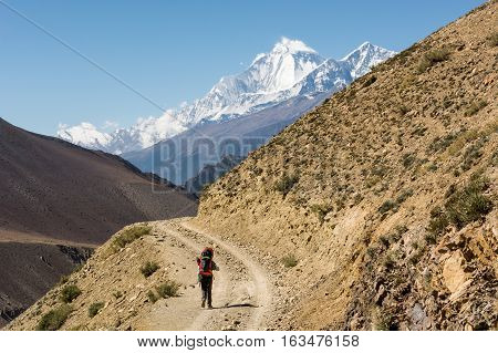 Female trekker walking alone though mountain desert. Annapurna circuit trek in Nepal.