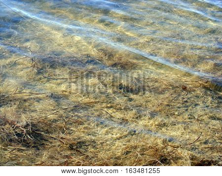 Stagnant water clarity and water ripple for graphic design poster