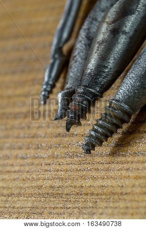 Several different sizes old gimlets, hand-tools for drilling holes in wood. Macro Brown plywood background