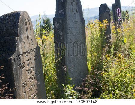 Old abandoned Jewish cemetery in the Ukrainian Carpathian Mountains.