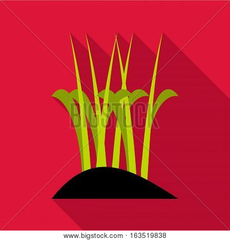 Sprouts icon. Flat illustration of sprouts vector icon for web