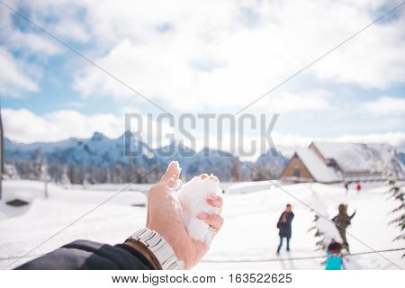 The Snowball in Mt.Rainer National Park/The Snowball