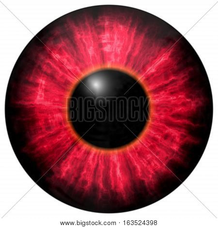 Isolated Red Circle Eye. Big Eye With Striped Iris And Dark Pupil.