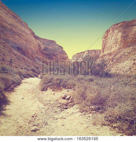 Canyon En Avedat of the Negev Desert in Israel at Sunset Instagram Effect