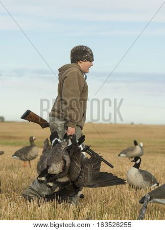 A young boy with Canada geese in North Dakota