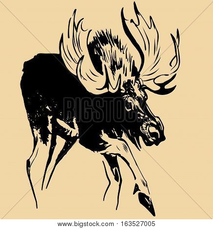 sketch adult elk with large antlers and raised the front foot