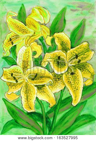Yellow lilies on green hand painted picture watercolors