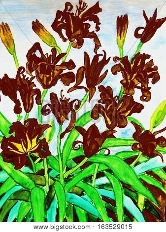 My own painting watercolours: black daily lilies.