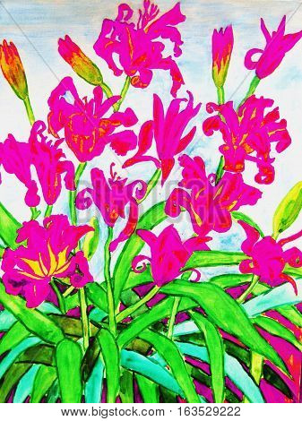 My own painting watercolours: pink daily lilies.