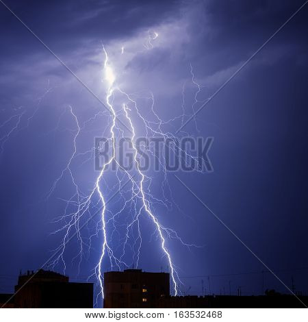 The Branched lightning in the night sky