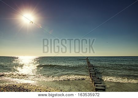 Wooden breakwaters on a shore of the Baltic Sea with a bright sun and a flying bird