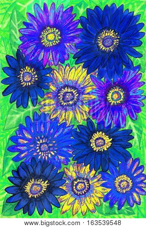 Background from gerbera flowers of blue and yellow colours on green leaves hand painted picture watercolours.