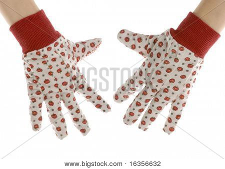 hands wearing womens gardening or work gloves isolated on white background