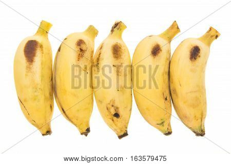 Five Yellow Bananas