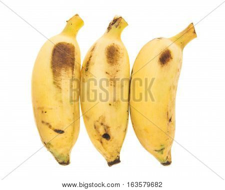 Three Yellow Bananas