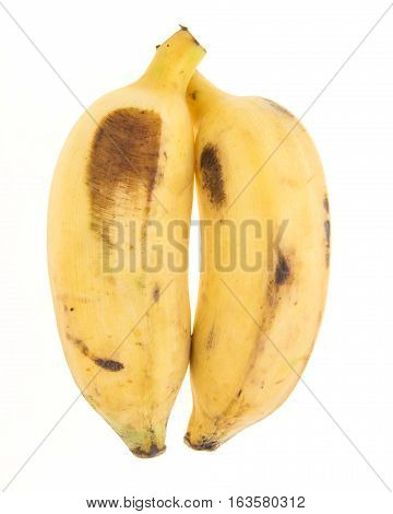 Pair Yellow Banana
