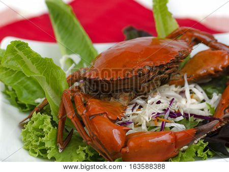 Steamed brown crab on a plate of salad isolated against white.